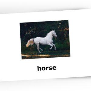 flashcards farm animals