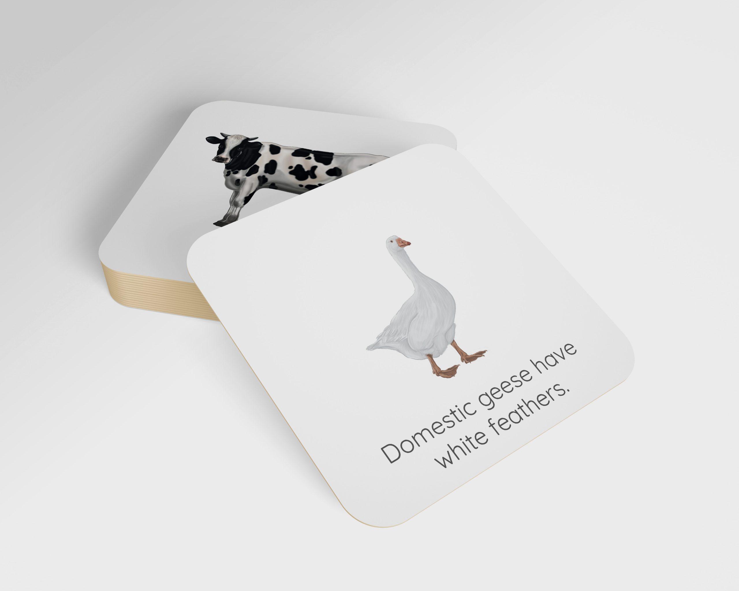 karty obrazkowe zwierzęta gospodarskie