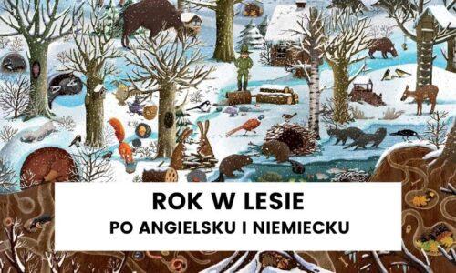 """""""Rok w lesie"""" po angielsku i niemiecku – luty"""